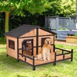 """Rich result on google's SERP when searching for """"dog house"""""""